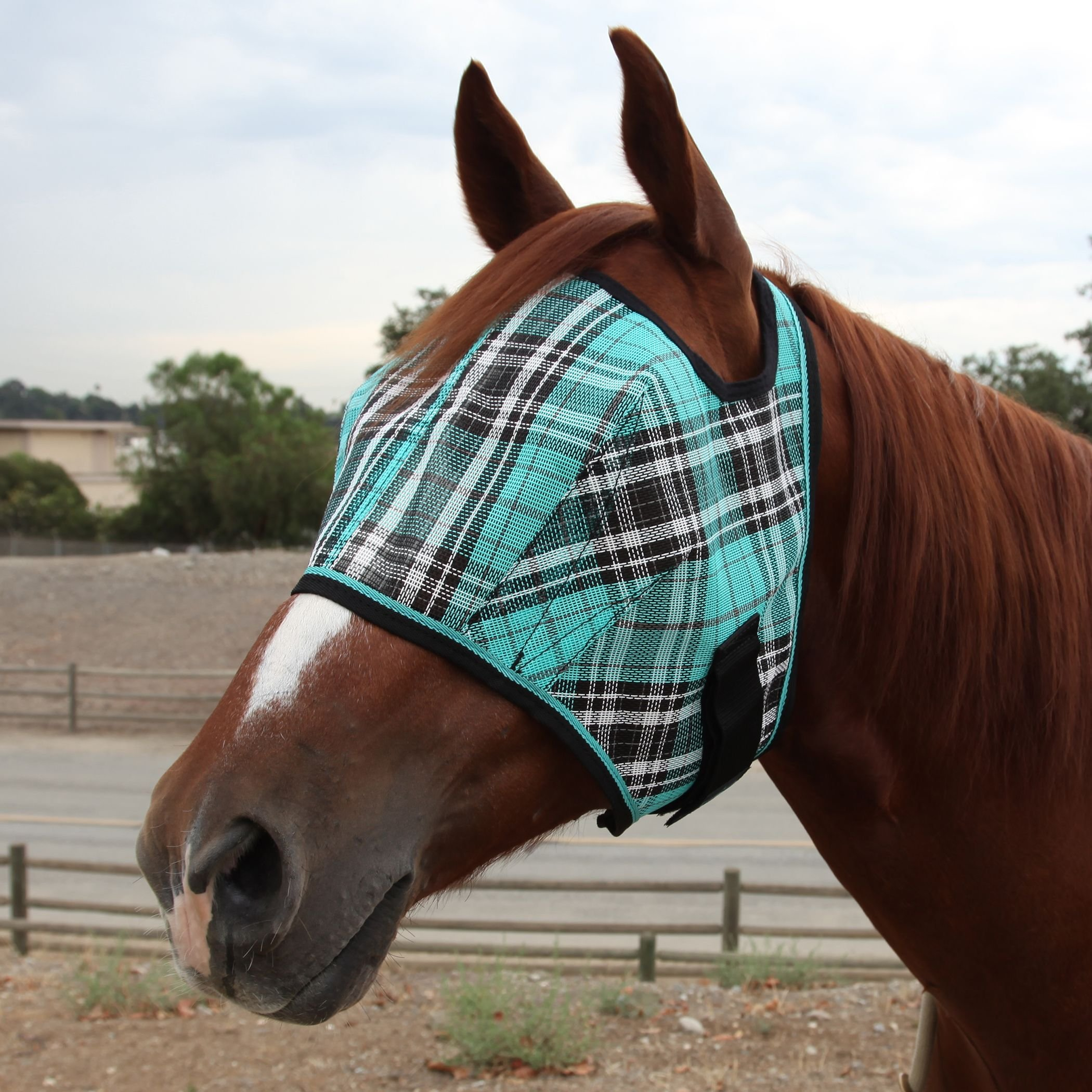 Best Rated In Horse Fly Control Masks Helpful Customer Reviews