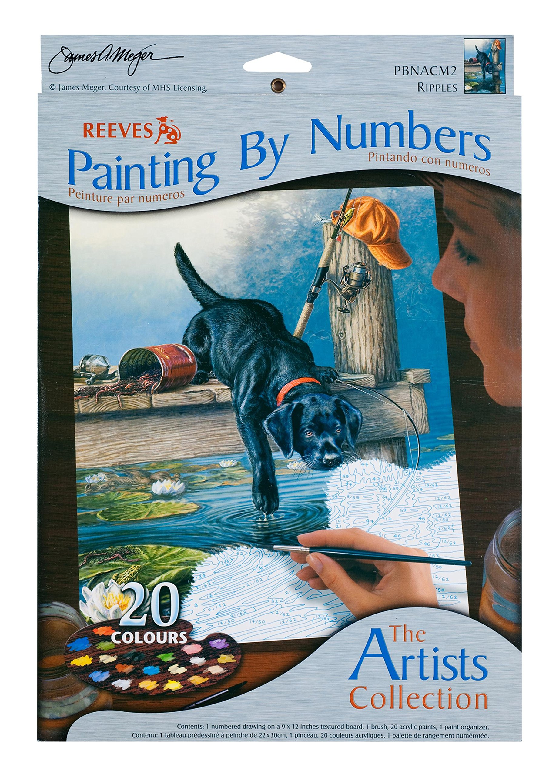 Reeves 9-Inch by 12-Inch Paint by Number Artist's Collection, Ripples