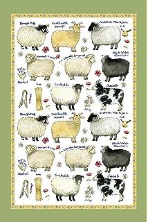 Montgomery Street Black Sheep Cotton Flour Sack Dish Towel Montgomery Street Designs SLTT125