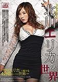 北川エリカの世界 AVS collector's [DVD]