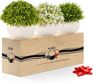 Small Artificial Plants for Home Décor and Office, Set of 3 – Green and White Realistic Mini Fake Desk Plants – Pet and Kid-Safe PE Plastic Decor Plants with Faux Concrete Pots Home, 5.5 x4.7