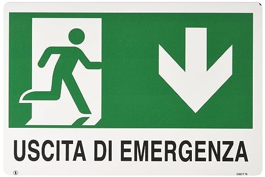 Ist - Cartel de PVC para salida de emergencia, texto en ...
