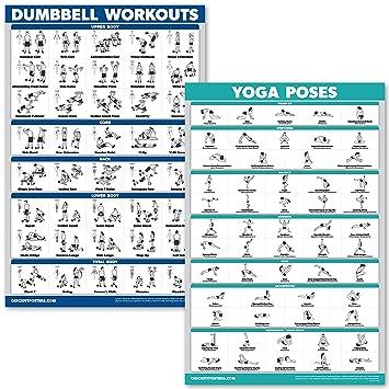 Amazon.com: QuickFit - Juego de pósteres para ejercicios de ...