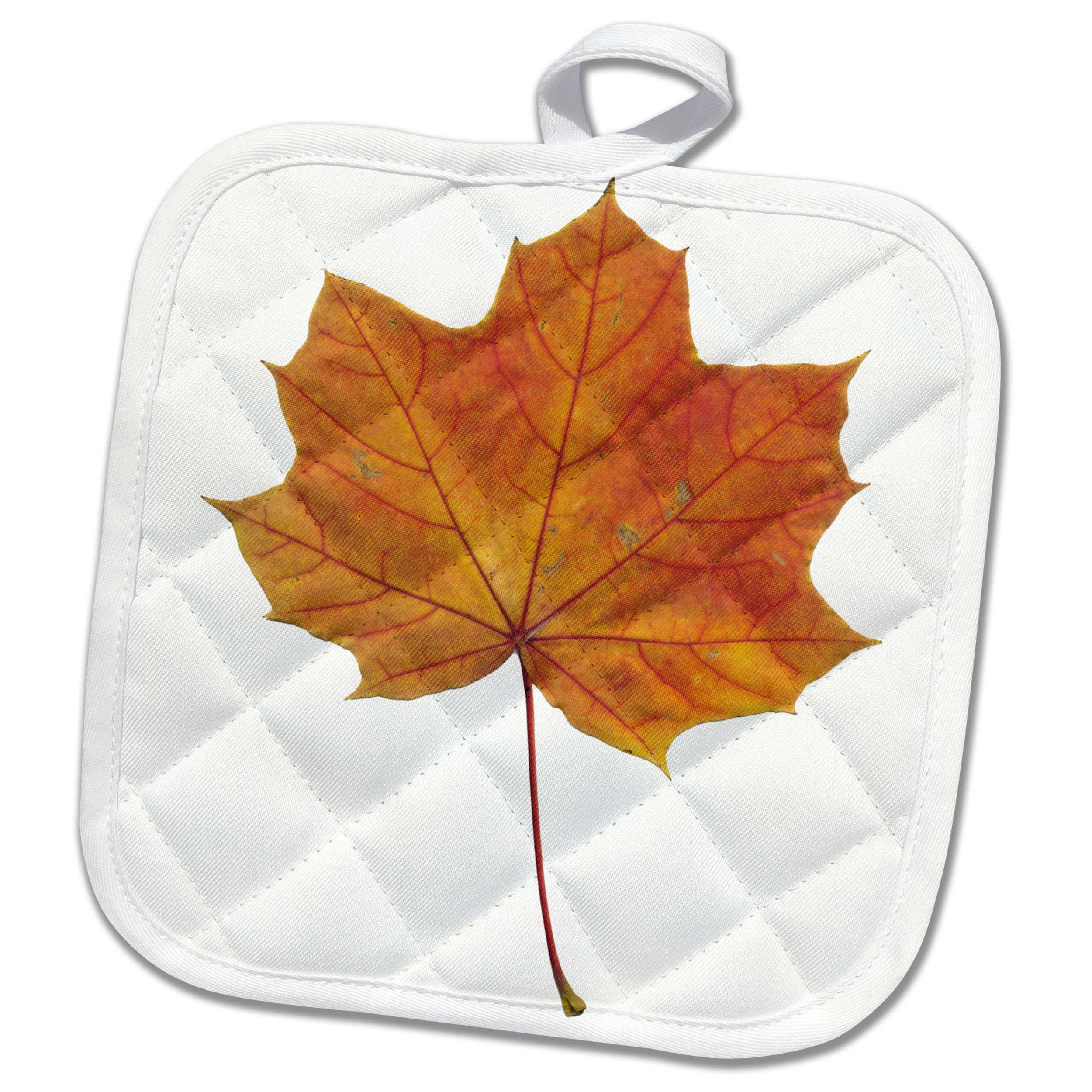 3dRose Alexis Design - Floral - Brown maple leaf, red fibers, transparent background - 8x8 Potholder (phl_264134_1)