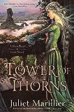 Tower of Thorns (Blackthorn & Grim Book 2)