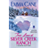 A Town Called Valentine A Valentine Valley Novel Kindle border=
