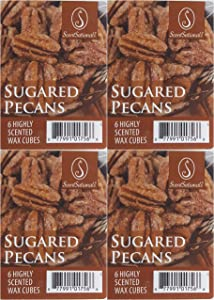 Scentsationals Fusion Sugared Pecans Wax Cubes - 4 Packs of 6 Cubes Each