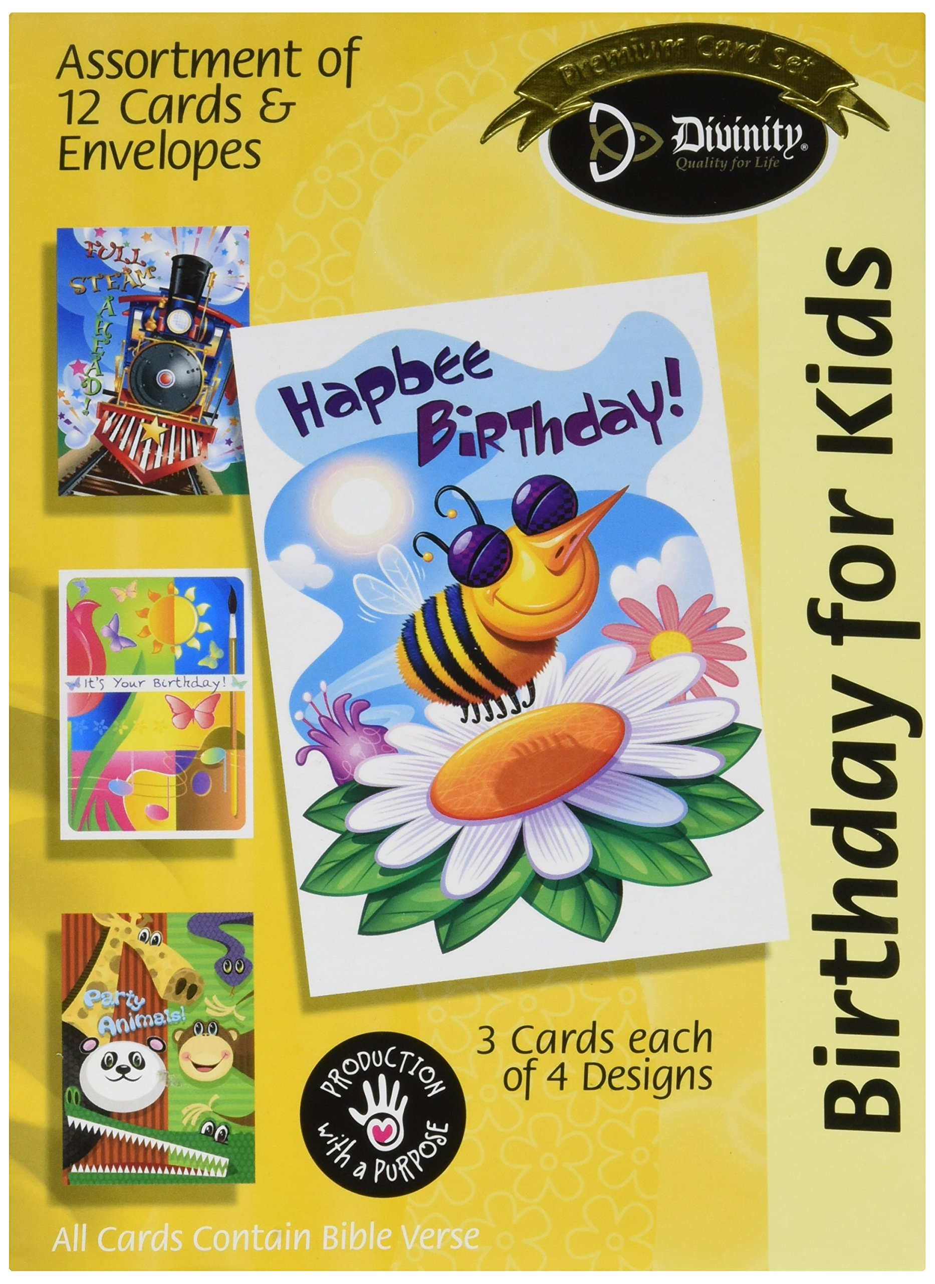 Amazon Assorted 12 Pack Boxed Animal Birthday Cards Bulk For