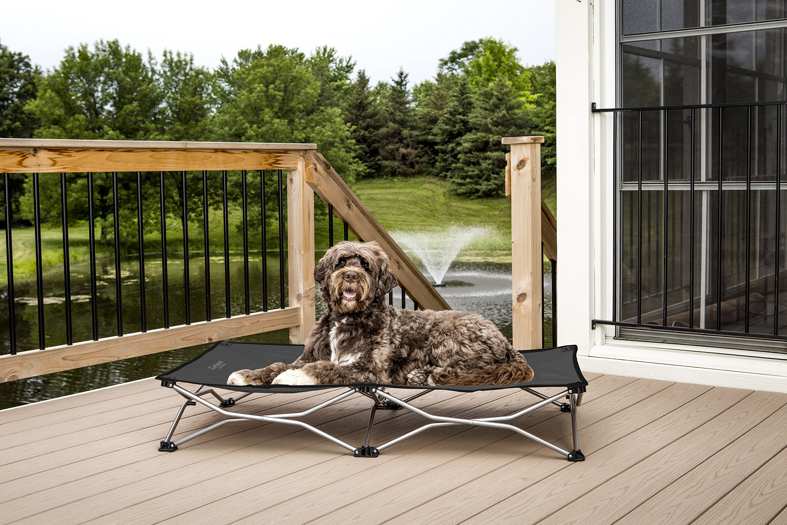 Carlson Pet Products 8025 Elevated Folding Pet Bed 46'' Long, Includes Travel Case, Gray