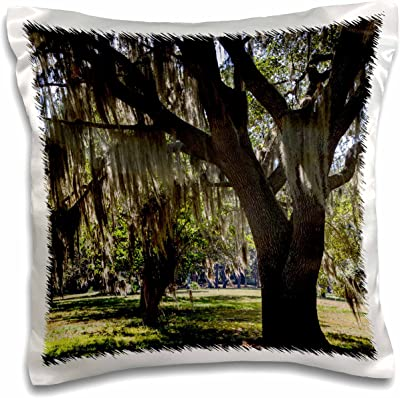 3D Rose Georgia Fort Frederica National Monument Live Oak Trees Pillow Case, ...