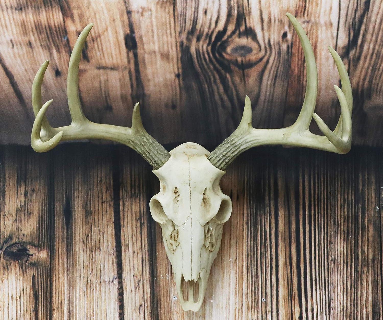 "Ebros Gift Rustic Hunter Deer 10 Point Buck Skull Trophy Antlers Wall Mounted Plaque Trophy Decor Figurine 14.25"" Long Hunter's Antler Rack Theme Deers Bucks Hunting Skulls Trophies Hanging Sculptures"