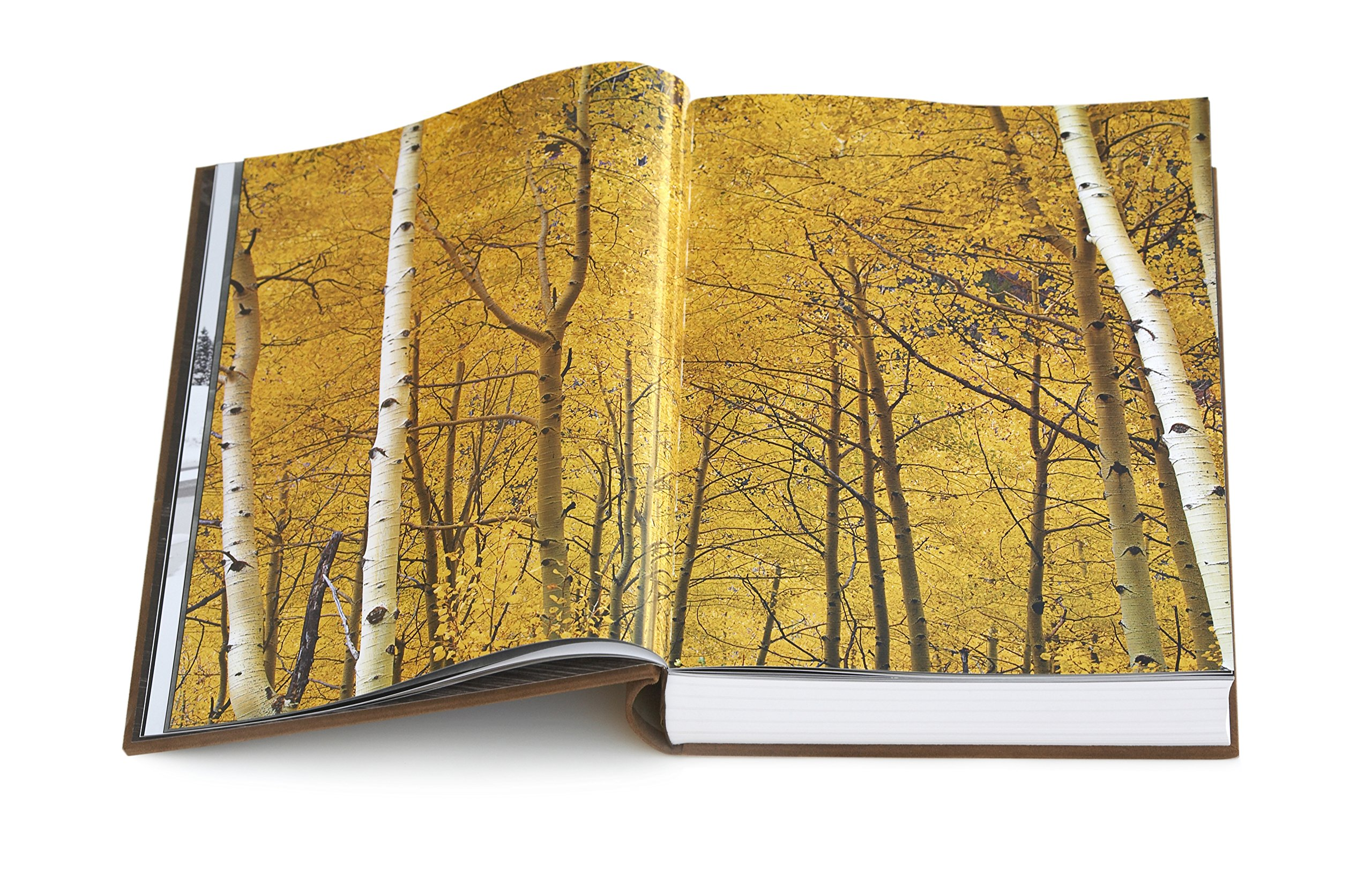 peter lik 25th anniversary book