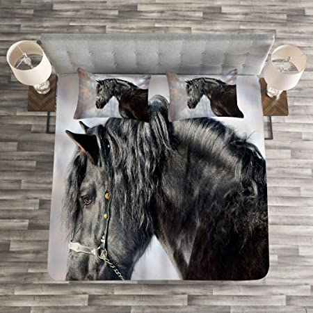 Queen Size Lunarable Horse Bedspread Black Blue Decorative Quilted 3 Piece Coverlet Set with 2 Pillow Shams Black Stallion Portrait Profile in Winter Forest Friesian Mammal Purebred