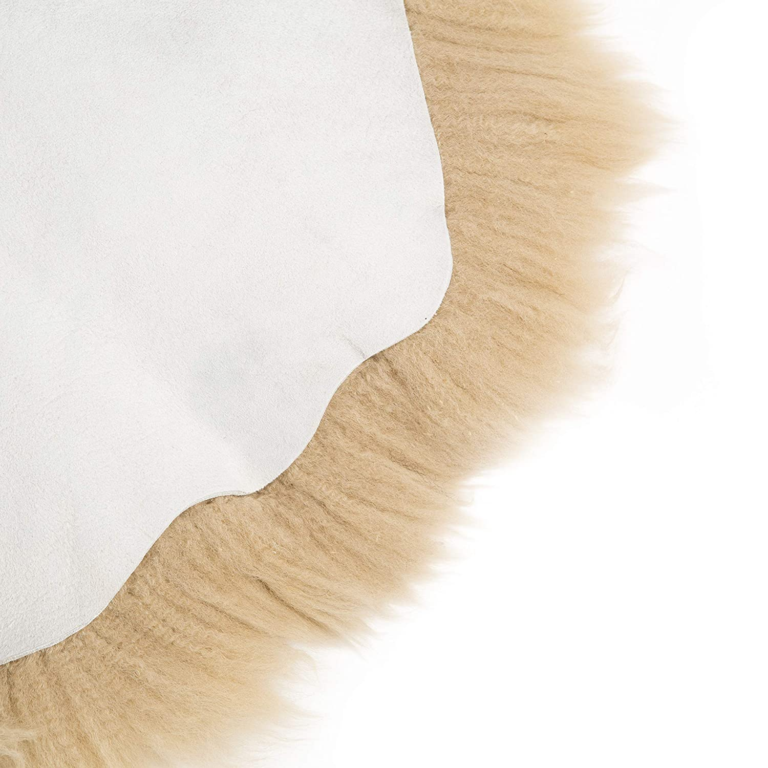 Amazinggirl Sheepskin Rug in the Box Ready To Go 100/% Natural Genuine Leather Extra Thick Wool Carpet Soft Silky Fleece Chair Cover Seat Pad for Bedroom Sofa Floor Fireplace