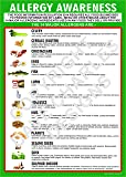 FOOD ALLERGY AWARENESS SIGN A4 LIST (297mm x 210mm) LAMINATED 400g 14 allergens POSTER The clearest food allergy notice in the food and hygiene posters range. Allergy warning sign