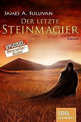 Der letzte Steinmagier (German Edition) Kindle Edition
