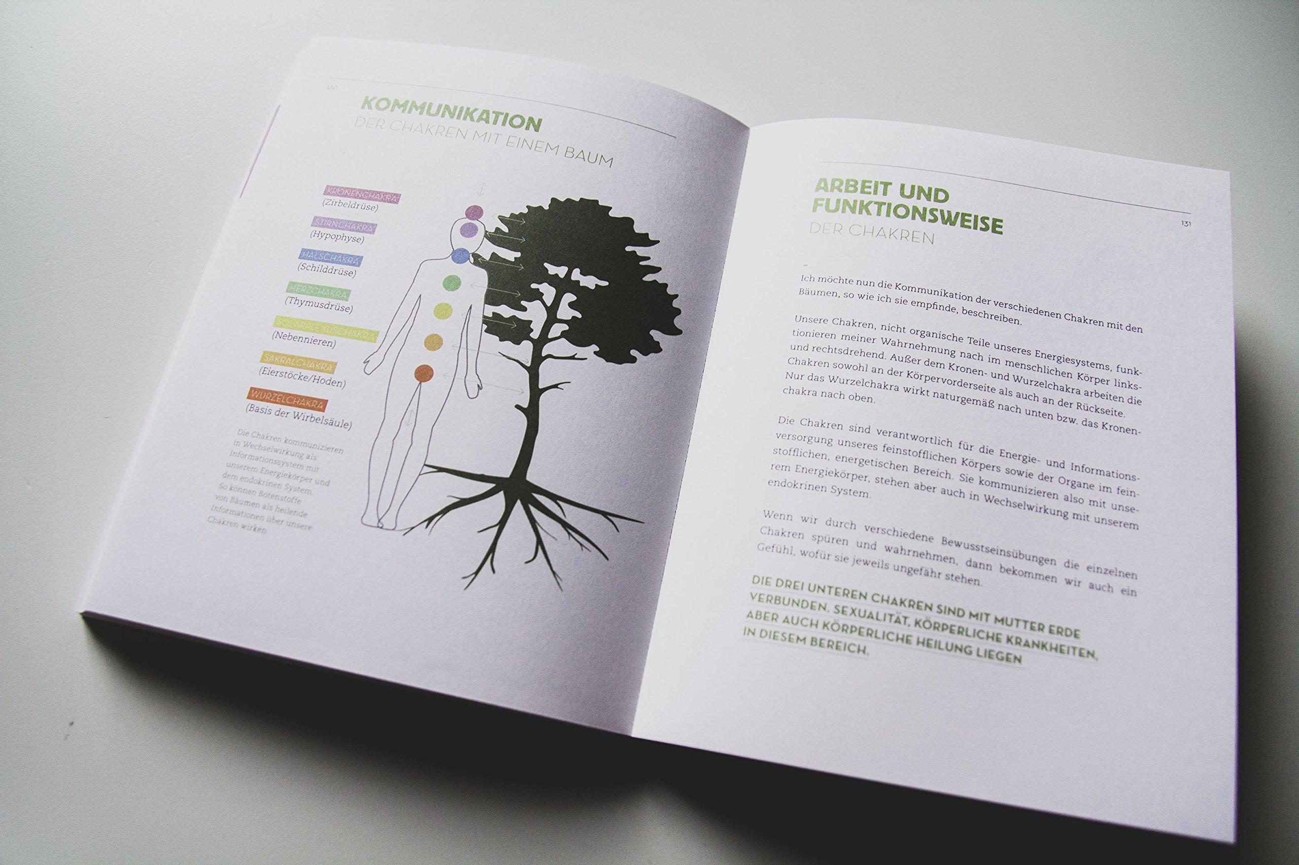 Nett Endokrinen Systems Teile Und Funktionen Ideen - Menschliche ...