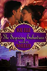 The Surprising Enchantress - Book III: Cinderella Series Kindle Edition