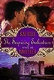 The Surprising Enchantress - Book III: Cinderella Series