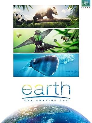 """Résultat de recherche d'images pour """"Earth: One Amazing Day film blog"""""""