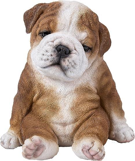 Amazon.com: Sentado Sleepy Bulldog cachorro: Jardín y Exteriores