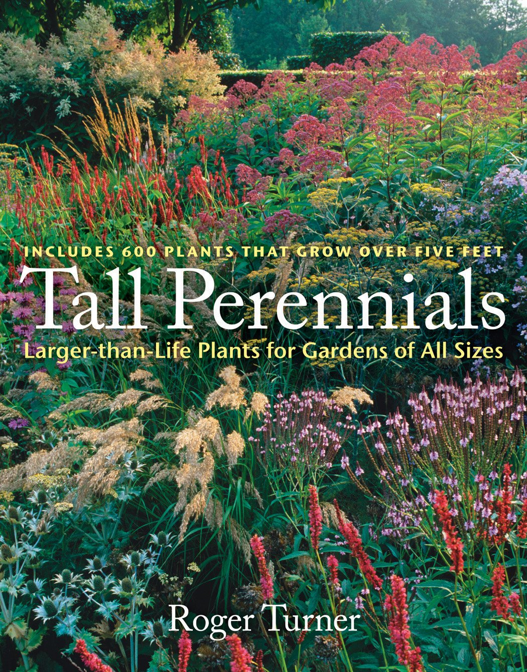 Tall Perennials Larger Than Life Plants For Gardens Of All Sizes