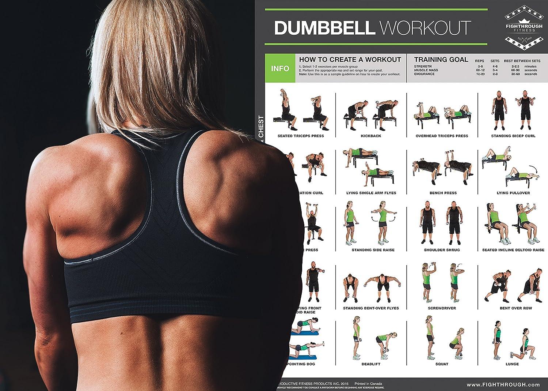 Mancuernas ejercicios Poster PLASTIFICADO gráfico - ft - entrenamiento de fuerza - Core - Pecho - Patas - , hombros y espalda - Construir Músculo, ...