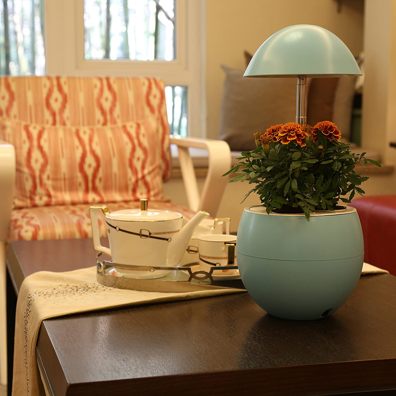 Amazon.com : Smarson Indoor LED Light Hydroponic Garden, Grow Herbs ...