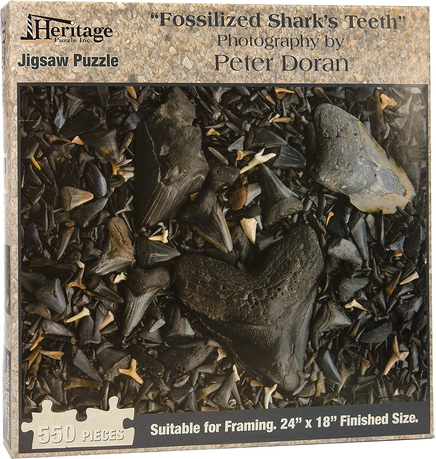 Heritage Puzzle Fossilized Shark's Teeth - 550 Piece Jigsaw Puzzle