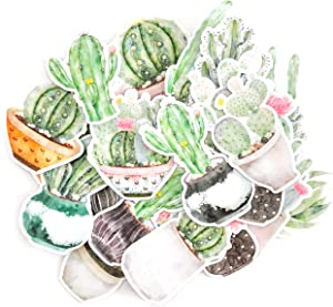 Navy Peony Faded Watercolor Moon Cactus and Succulent Decals | Mini Waterproof Sticker Pack for Water Bottles, Laptops and Phone Cases | Cute Stickers for Your Scrapbook, Planners and Bullet Journals