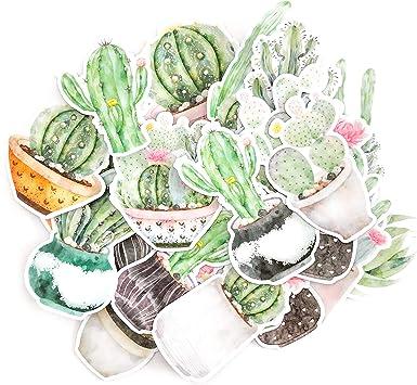 Vinyl Sticker Waterproof Decal Cacti Terrarium