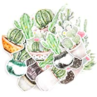 Navy Peony Faded Watercolor Moon Cactus and Succulent Decals | Mini Waterproof Sticker Pack for Water Bottles, Laptops…