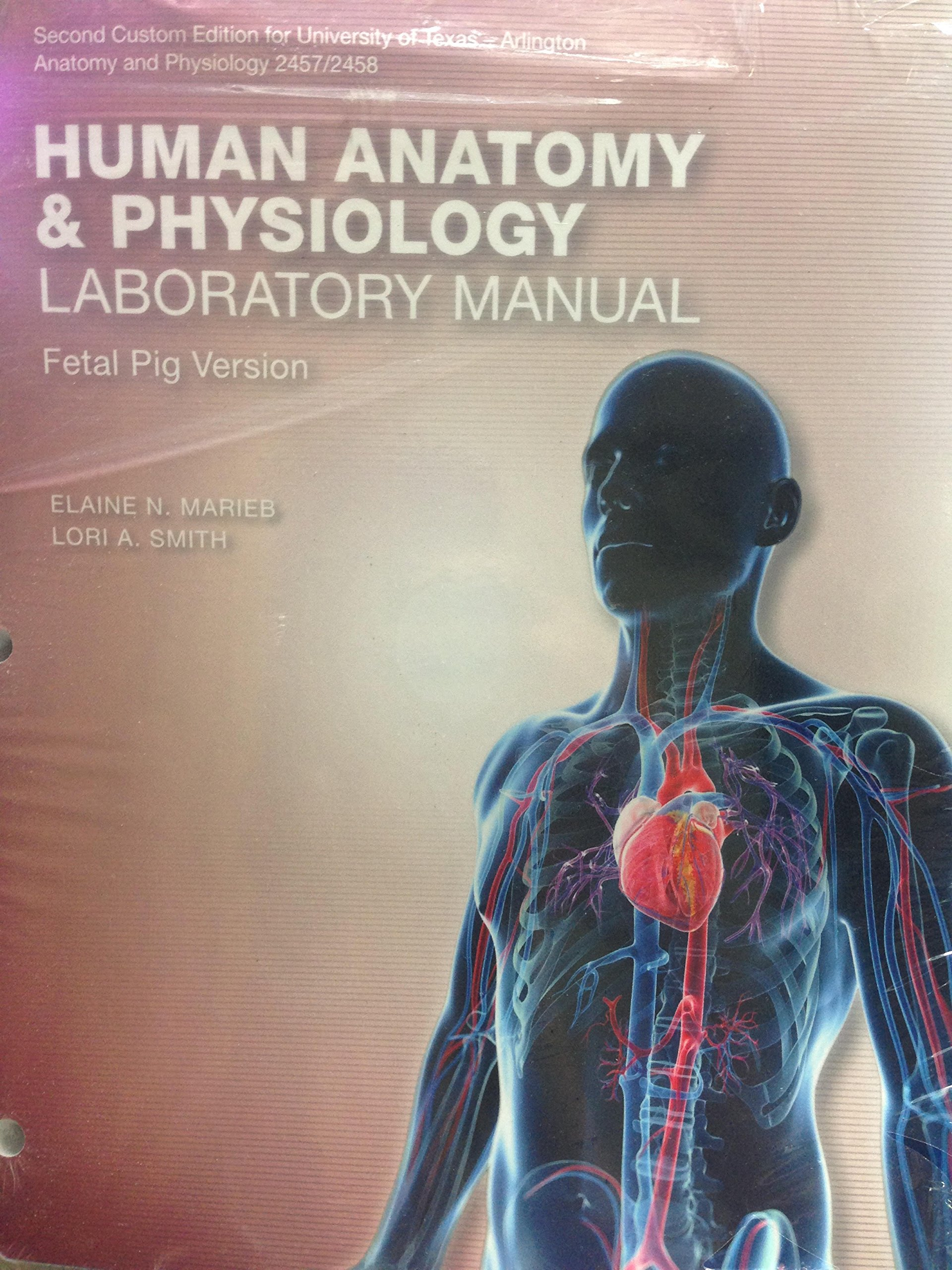 Human Anatomy & Physiology Laboratory Manual, Fetal Pig Version, Custom  Edition for University of Texas - Arlington, Anatomy and Physiology  2457/2458, ...
