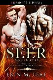 Seer (Soulmates Book 2)