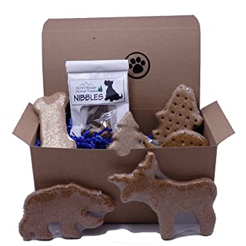 Amazon.com : Dog Gift Box with Assorted Treats - Made in USA : Pet ...