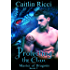 Protecting the Clan (Master of Dragons Book 2)