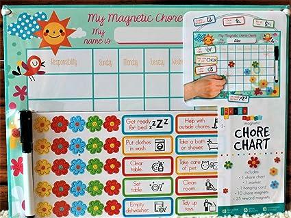 Amazon.com: My Chore y chart- Organizar y Fomentar la buena ...