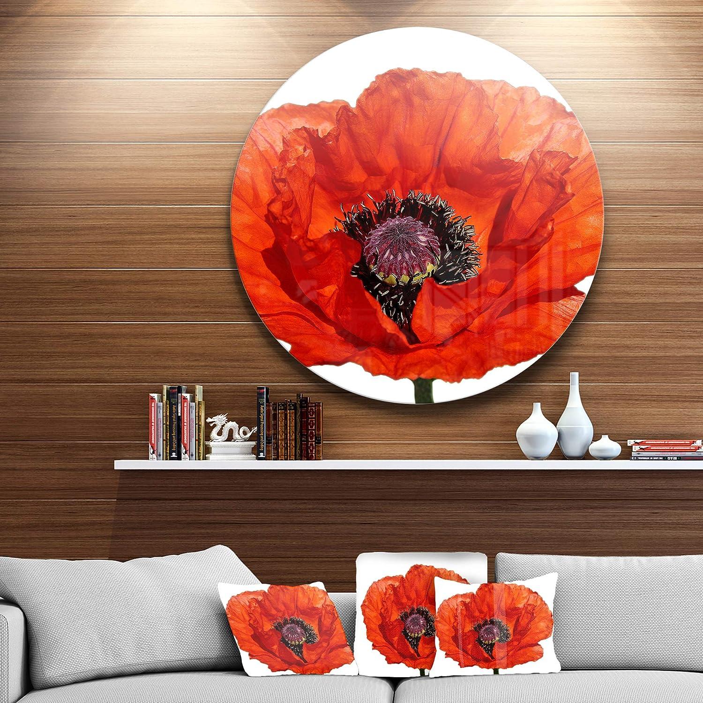 Designart MT13009-C23 Metal Wall Art Disc of 23 inch 23 H x 23 W x 1 D 1P Red