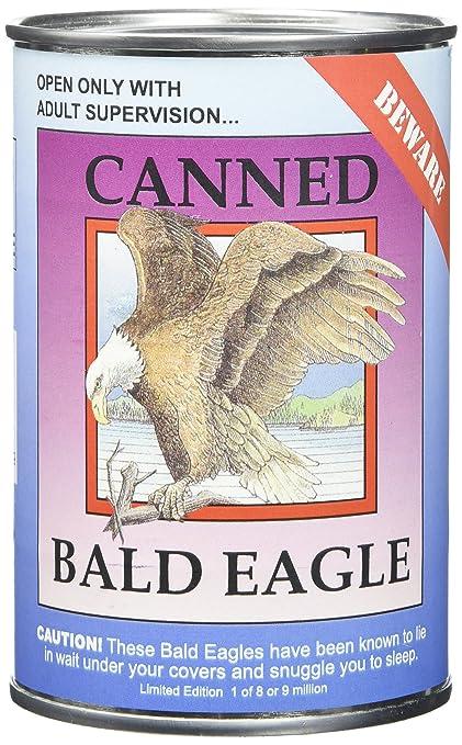 Amazon.com: Canned Critters Stuffed Animal: Bald Eagle 6\