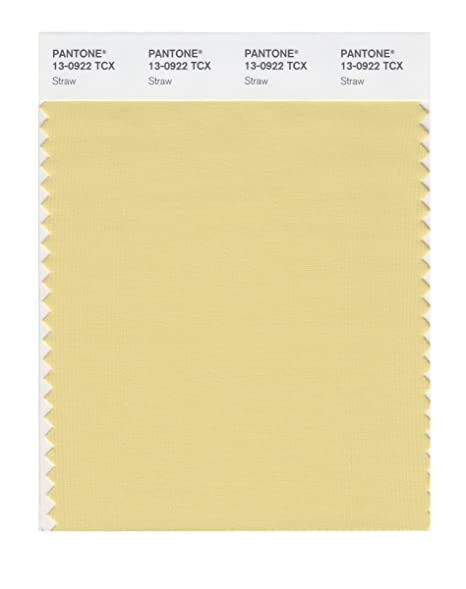 PANTONE SMART 13-0922X Color Swatch Card, Straw - Wall Decor