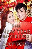 The New Year Boyfriend