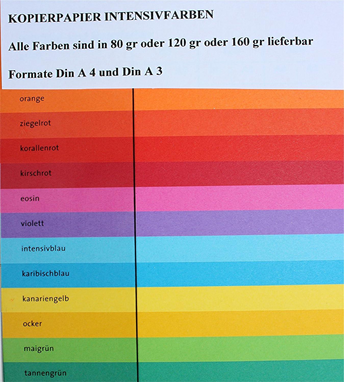Clairefontaine Kopierpapier Trophee A4 160g//qm VE=250 Blatt orange