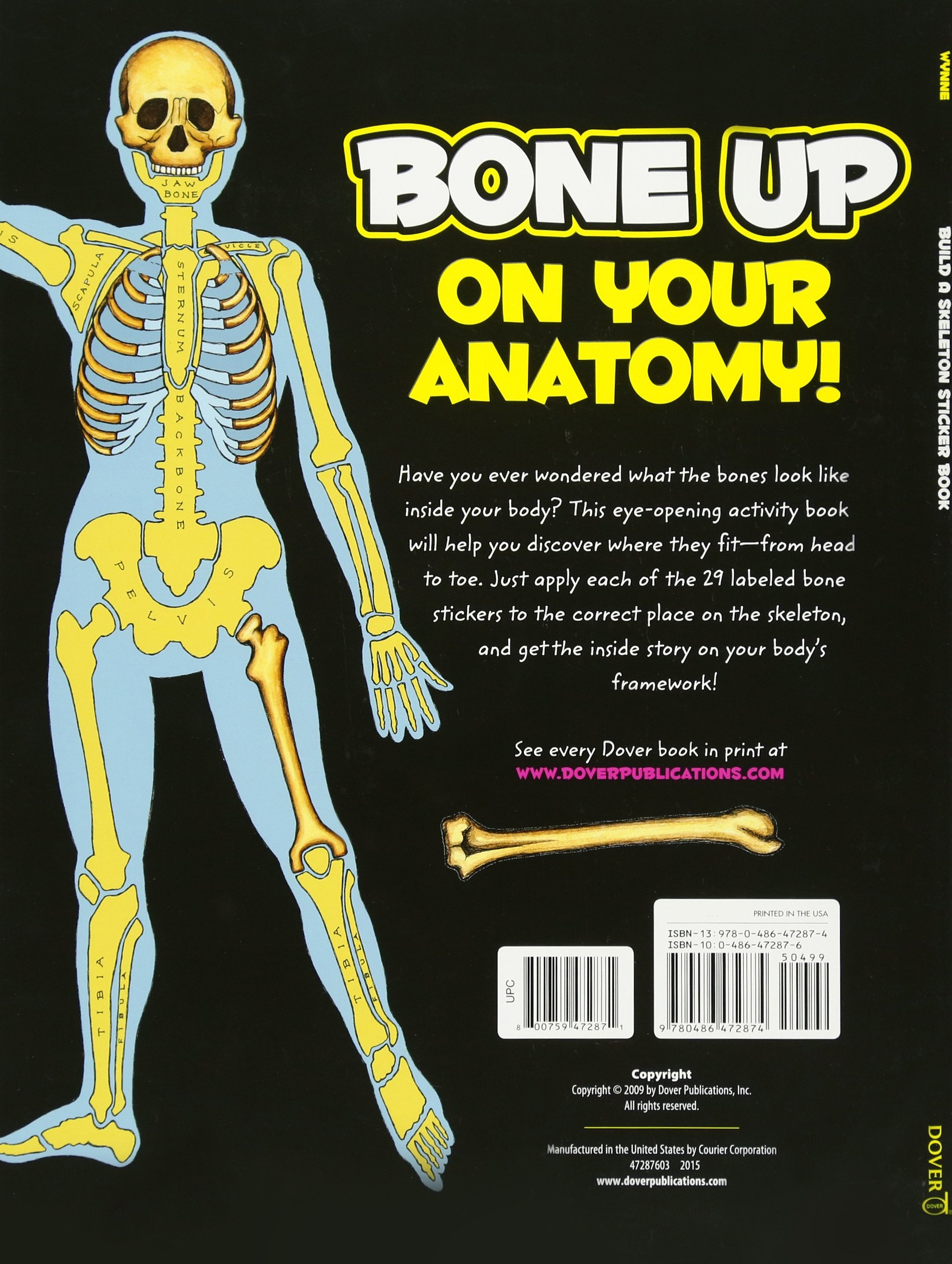 Build A Skeleton Sticker Book With Sticker S Dover Sticker Books