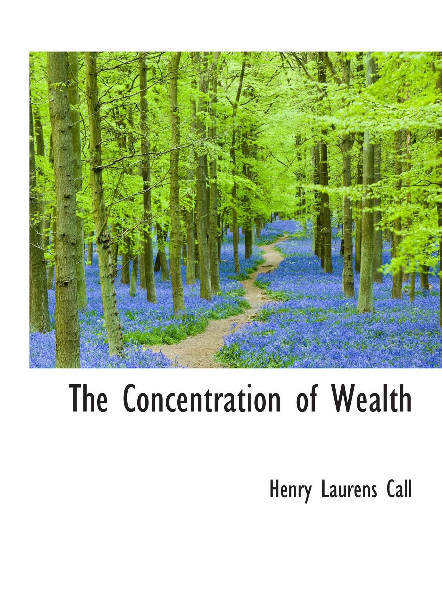 The Concentration of Wealth ebook