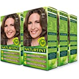 Naturtint Permanent Hair Color - 6N Dark Blonde, 5.28 fl oz (6-pack)