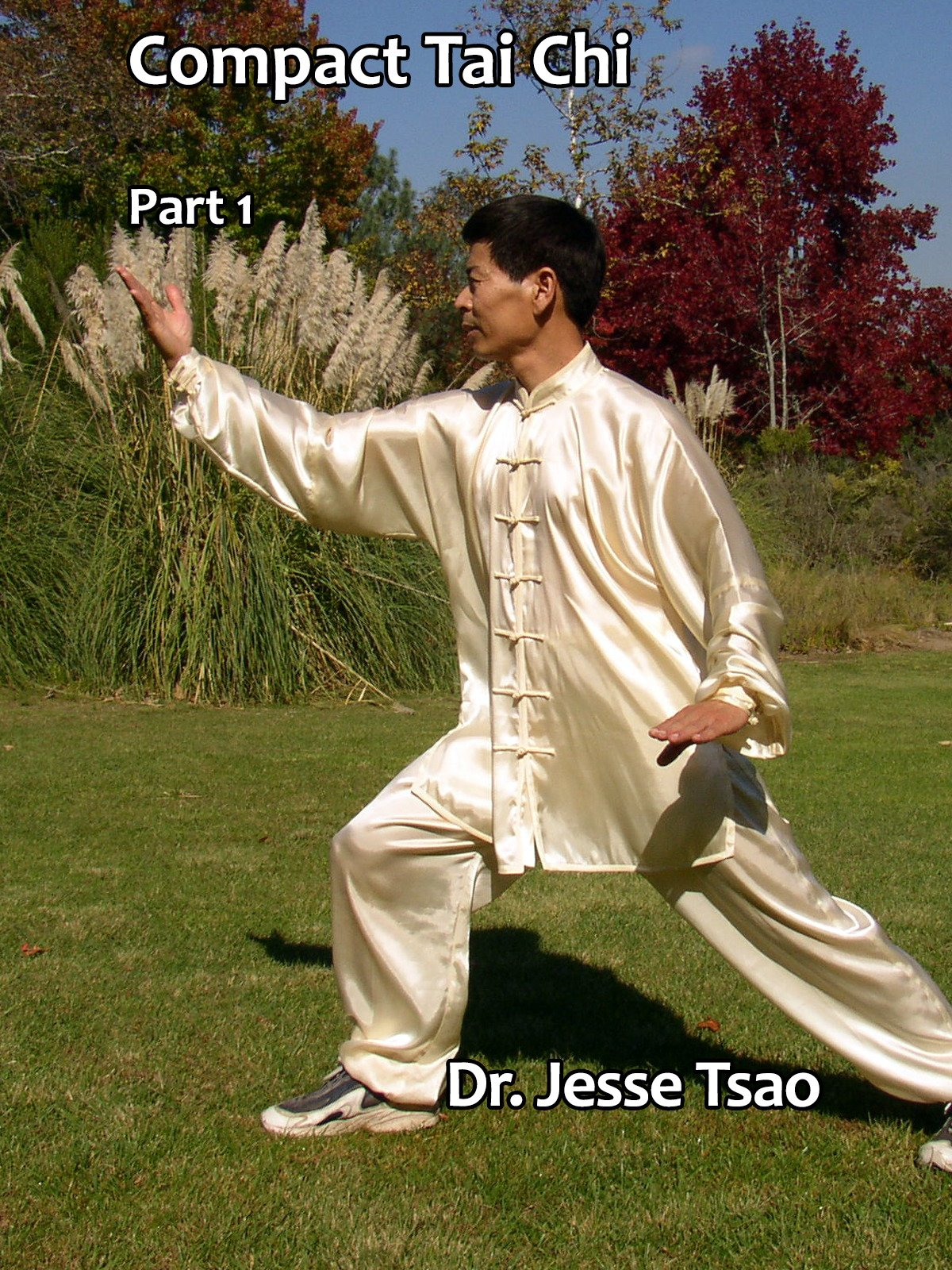 Compact Tai Chi, Part 1 by