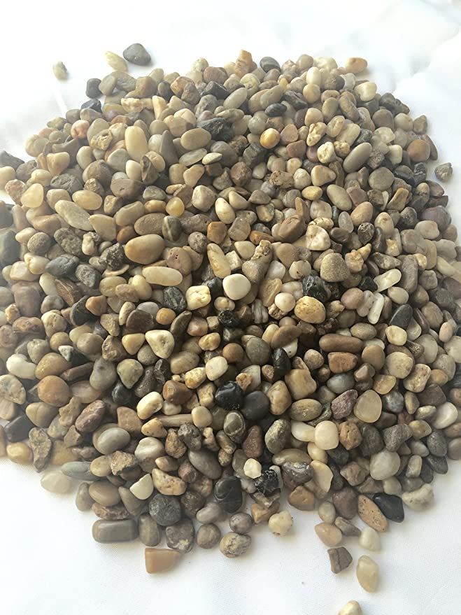 Amazon.com : Decorative Garden Pebbles/river Rocks Used For Outdoor  Landscaping Or Indoor Projects (fish Tanks And Potted Plants) 30 Lbs .