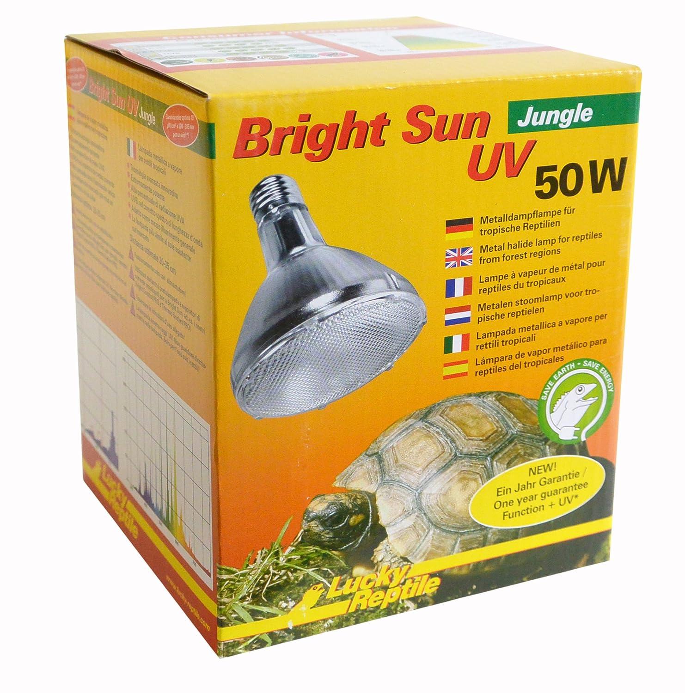91BHgJUk9TL._SL1500_ Wunderbar Lampe Mit E27 Fassung Dekorationen