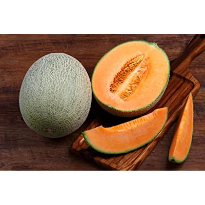 Hales Best Cantaloupe- 25 Seeds -Sweet Aromatic Melon -Early Producer- Gets Sweeter in Hot : Garden & Outdoor