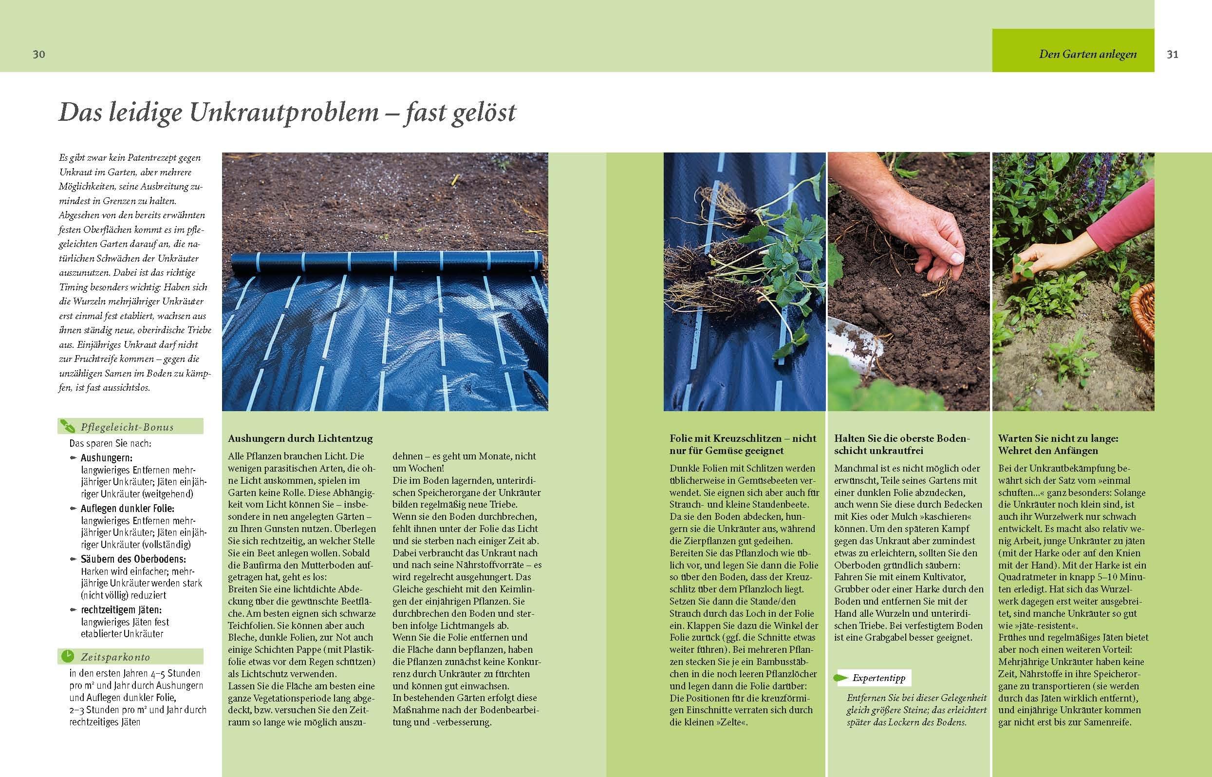 Pflegeleichter Garten: Clever Gärtnern Schritt Für Schritt: Amazon.de:  Wolfgang Hensel: Bücher